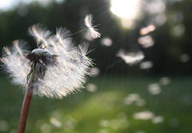 Moja walka z chorobą, czyli jak się oswoić z onkologiem, bólem i dziwnymi badaniami